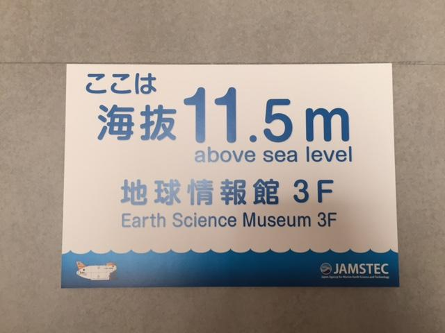 海抜11.5mであることを示す看板