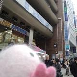 紀伊國屋書店でブックハンティングの現場を見学!